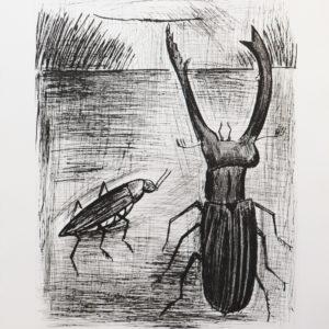 B.BUFFET, le lucane, gravure n°19/60, 58x76cm