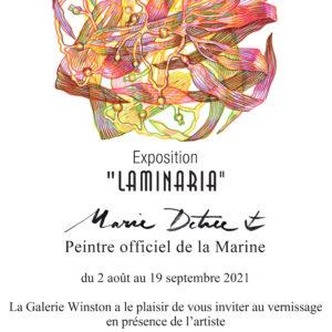 """Marie Détrée, Exposition """"Laminaria"""" à partir du 2 août 2021"""